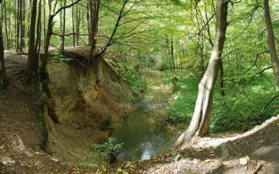 Jurajskie dolinki pod Krakowem