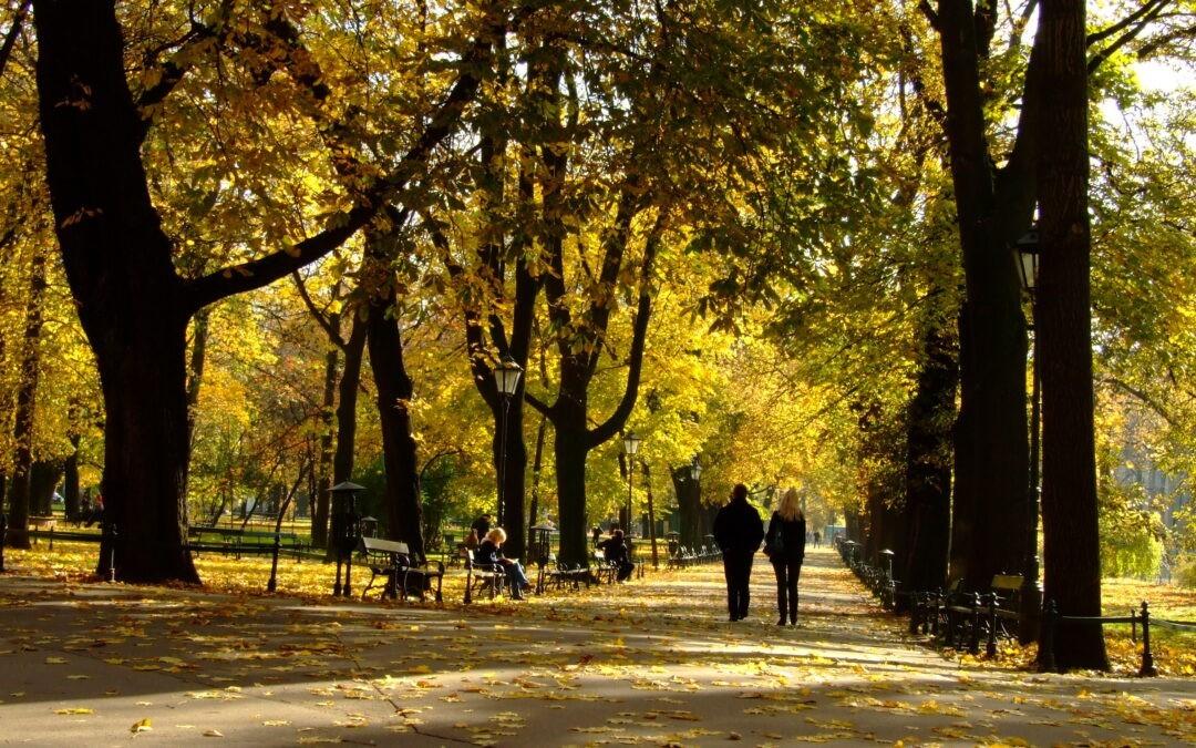Co robić jesienią w Krakowie?